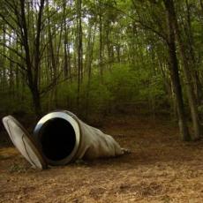 Le Vent des Forêts