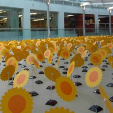 dangs solar flowers