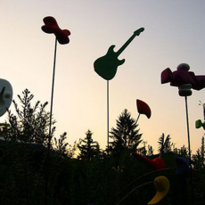 Création musicale et jardin