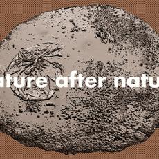 Nature after nature