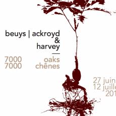 Beuys Acorns