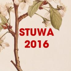 STW-2016_vignette