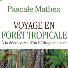 Voyage en forêt tropicale